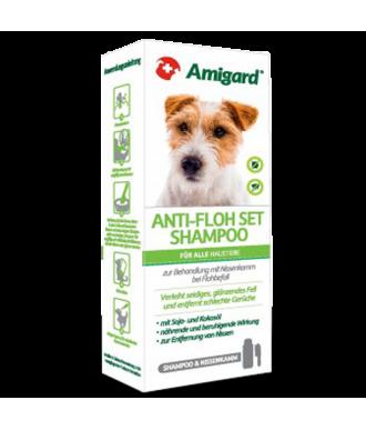 Anti-Flohset von Amigard mit Spezial Hundeshampoo gegen Flöhe und Nissen und einem Flohkamm zum ausbürsten von Ungeziefer