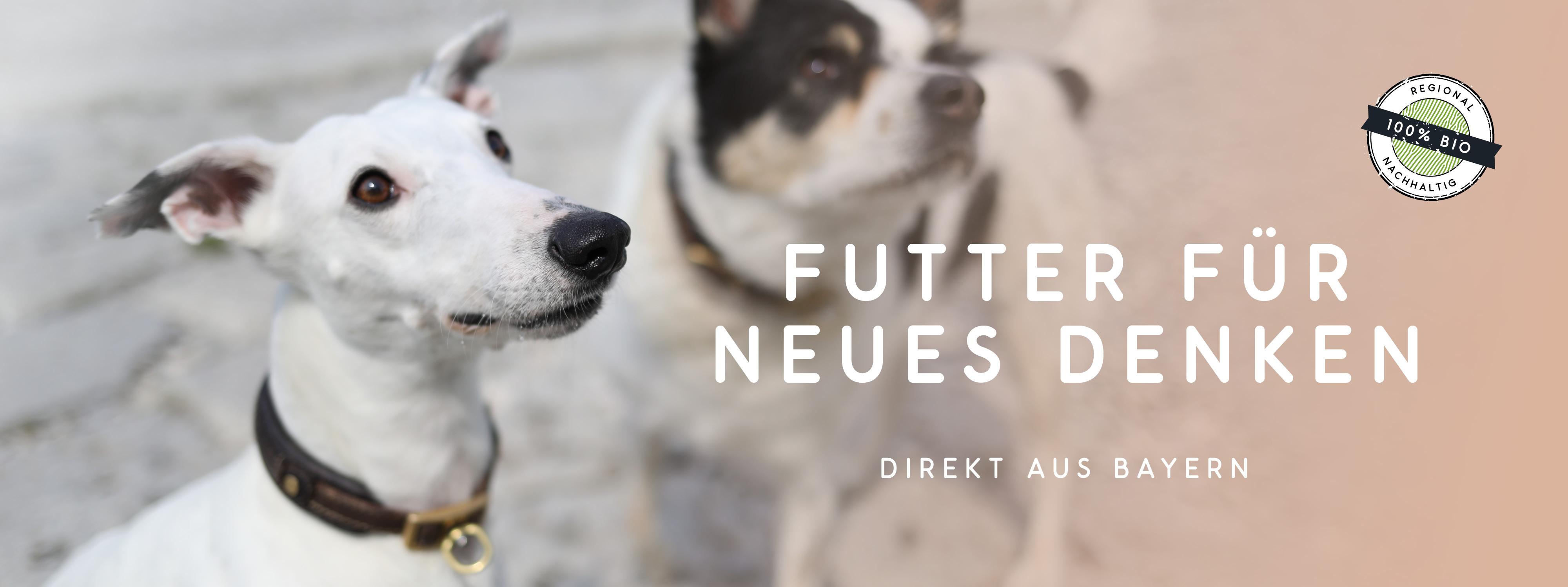 Neues Bio Hundefutter-Konzept mit natürlichen Zutaten von naftie