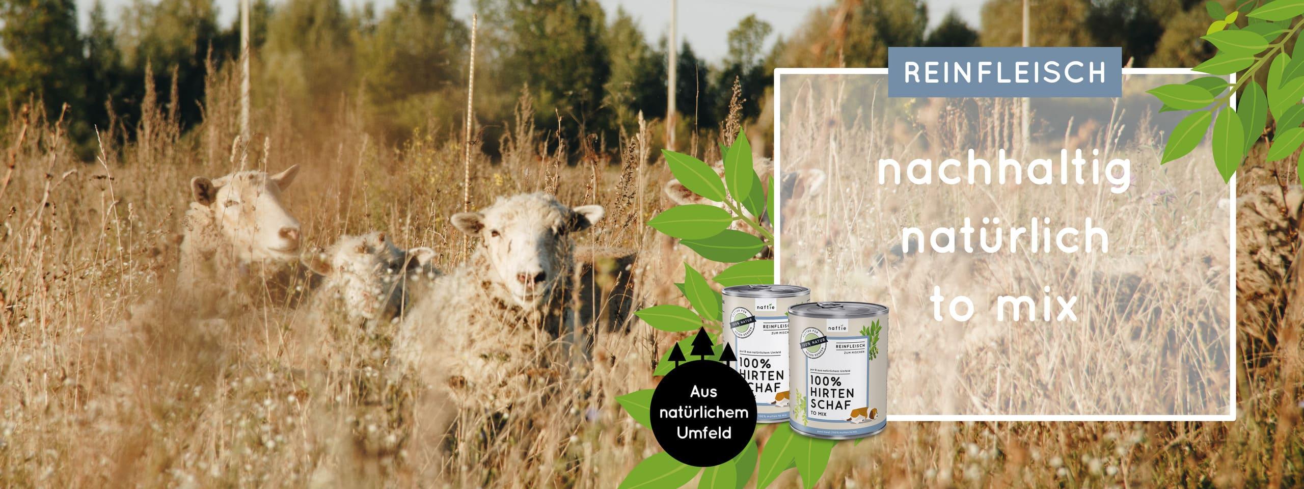Hundefutter nass & feucht in Bio-Qualität zum Mischen