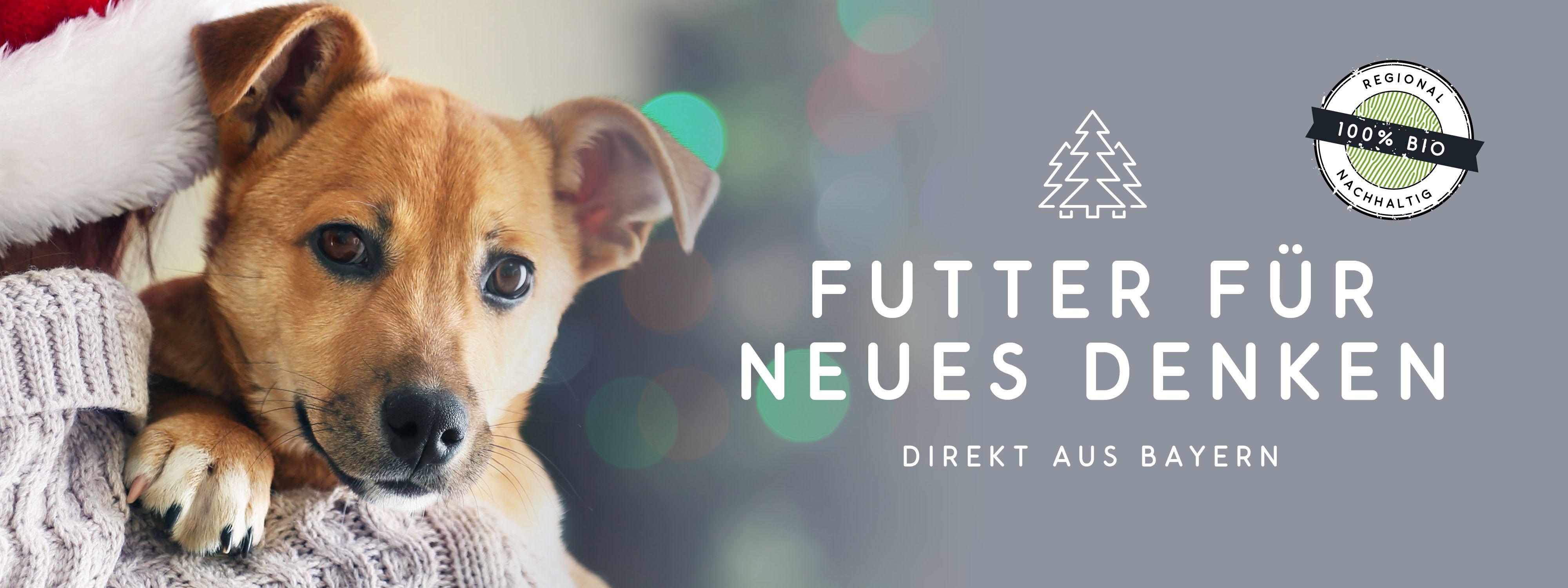 Bio Kräuter, Öle und natürliches Ergänzungsfutter für Hunde im naftie Shop